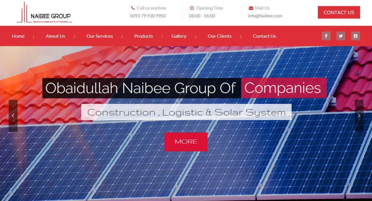 MSOFT Technologies Completed Naibee Group of Companies Website
